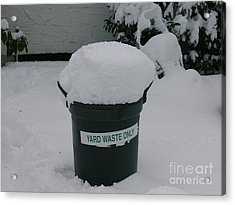 Lonely Snow Covered Trash Acrylic Print