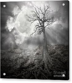 Lonely Tree With Roots Holding The Moon Acrylic Print by Angela Waye