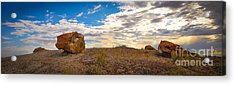 Lonesome One Acrylic Print