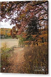 Lonesome Path Acrylic Print by Minding My  Visions by Adri and Ray
