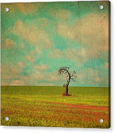 Lonesome Tree In Lime And Orange Field And Aqua Sky Acrylic Print