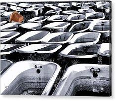 Lonesome Tub Acrylic Print