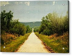 Long And Lonely Road Acrylic Print by Mikki Cromer