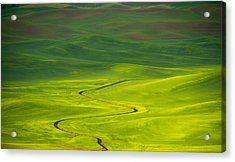 Long And Winding Road To Acrylic Print