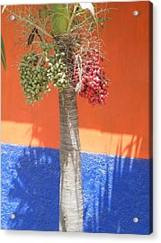 Acrylic Print featuring the photograph Long Division by Brian Boyle
