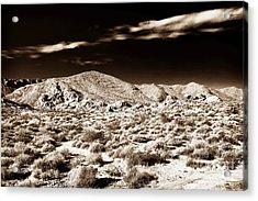 Long Journey Home Acrylic Print by John Rizzuto
