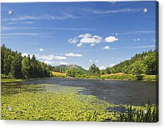 Long Pond - Acadia National Park - Mount Desert Island - Maine Acrylic Print by Keith Webber Jr