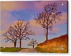 Long Road Home Acrylic Print