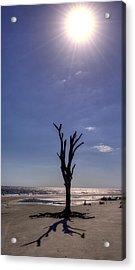 Long Shadow On Jekyll Island Acrylic Print