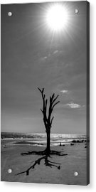 Long Shadow On Jekyll Island In Black And White Acrylic Print by Chrystal Mimbs
