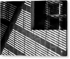 Long Shadows Acrylic Print by Steven Milner