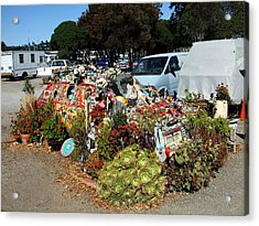 Long Term Parking Sausalito Style Acrylic Print by Richard Reeve