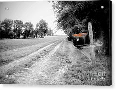 Long Way Home Acrylic Print