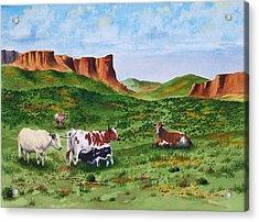 Longhorn Country Acrylic Print