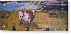 Longhorn Storm Acrylic Print by Jose Cabral