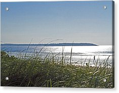 Longing For Summer Acrylic Print by John Hoey