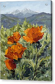 Longs Peak Poppies Acrylic Print by Mary Giacomini