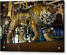 Looff Carousel Tiger 2 Acrylic Print by Daniel Hagerman