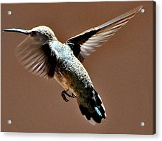 Acrylic Print featuring the photograph Look At My Crazy Crows Feet by Jay Milo