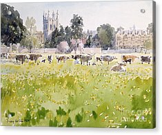 Looking Across Christ Church Meadows Acrylic Print by Lucy Willis