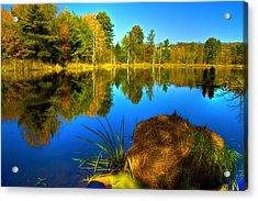 Looking Across The Pond Acrylic Print by David Simons