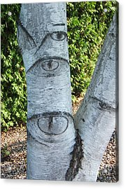 Looking At You Acrylic Print by Margaret McDermott