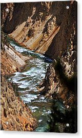 Looking Down Acrylic Print by Marty Koch
