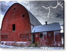 Looking For Shelter Acrylic Print by David Simons