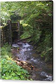 Looking Glass Creek - North Carolina Acrylic Print by Mike McGlothlen