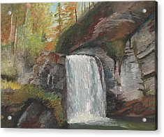 Looking Glass Falls Acrylic Print by William Killen
