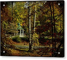 Acrylic Print featuring the photograph Looking Into Fall by James C Thomas