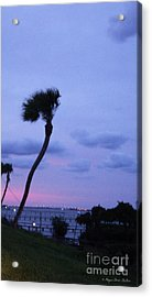 Acrylic Print featuring the photograph Looking North1 by Megan Dirsa-DuBois