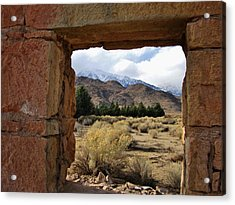 Acrylic Print featuring the photograph Looking Out by Marilyn Diaz