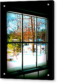 Looking Out Acrylic Print by Pamela Hyde Wilson