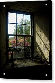 Looking Through Time Acrylic Print