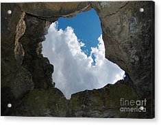 Acrylic Print featuring the photograph Looking Up by Debra Thompson