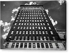 Looking Up Acrylic Print by Lee Wellman