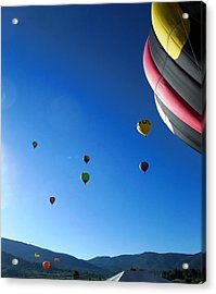 Looking Up Acrylic Print by Stephen Schaps