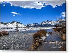 Looking Up The Salmon River Acrylic Print by Robert Bales