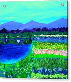 Lookout Over Susan's Garden Acrylic Print