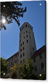 Lookout Sky Tower Acrylic Print by James Potts