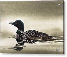 Loon In Still Waters Acrylic Print