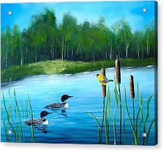 Loons In A Lake Acrylic Print