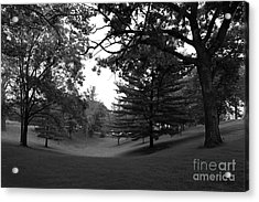 Loras College Landscape Acrylic Print by University Icons