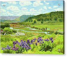 Los Penasquitos Looking East Acrylic Print by Mary Helmreich