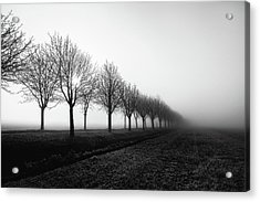 Losing Sight Acrylic Print by Christophe Staelens