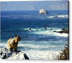 Lost At Sea Acrylic Print by Karen Wiles