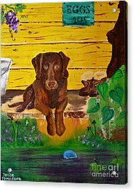 Acrylic Print featuring the painting Lost Ball by Denise Tomasura