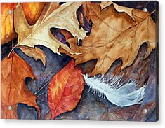 Lost Feather Acrylic Print by Enola McClincey