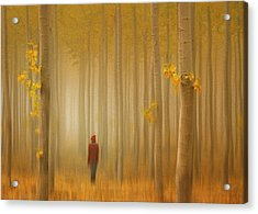 Lost In Autumn Acrylic Print by Lydia Jacobs
